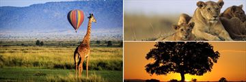 The Masai Mara landscapes, wildlife and sunset