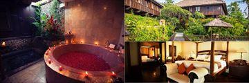 Gorgeous accommodation at Hotel Tungu
