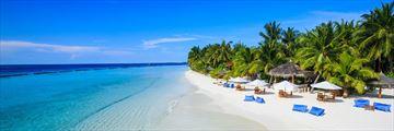 Kurumba Beach Resort