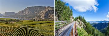 Vancouver Okanagan Valley Vineyard & Myra Canyon