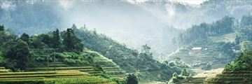 A panoramic view of Vietnamese rice terraces