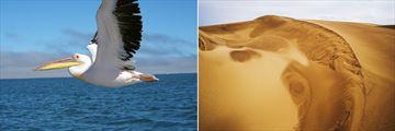 Walvis Bay & Namib Desert
