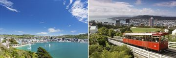 Wellington City, North Island