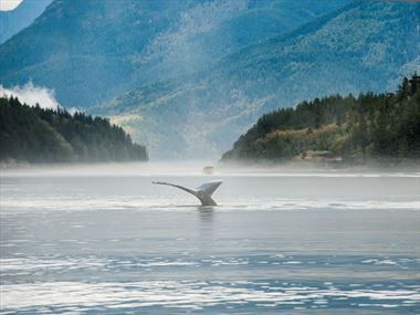 Top 10 outdoor experiences in Vancouver Island
