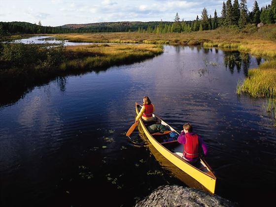 Canoeing in Algonquin Park, Ontario