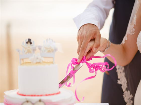 Stylish wedding cake cutting