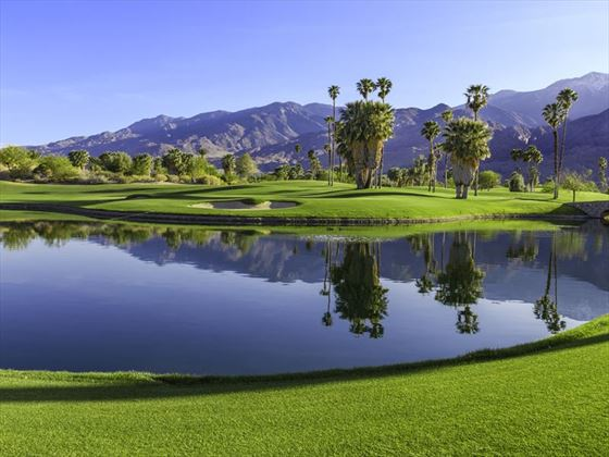 Afternoon on the green in Palm Springs