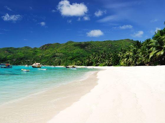 The beach at Anse Royale