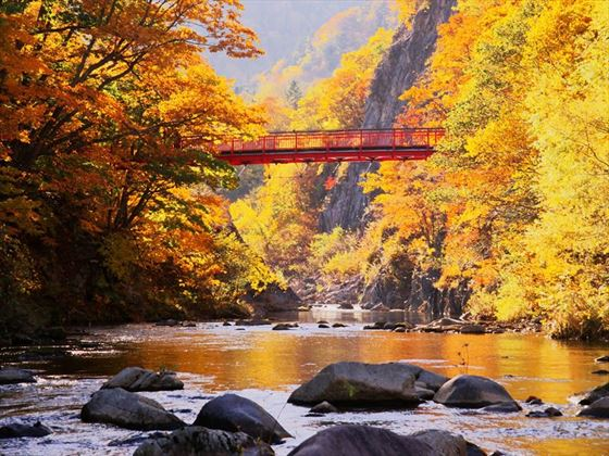 Autumn colours of Hokkaido, Japan