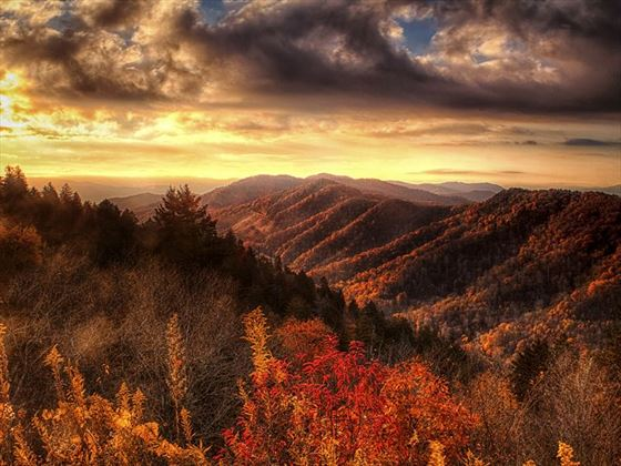 Autumn hillsides in the Smokies
