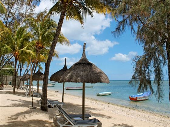 Beach views at Les Cocotiers