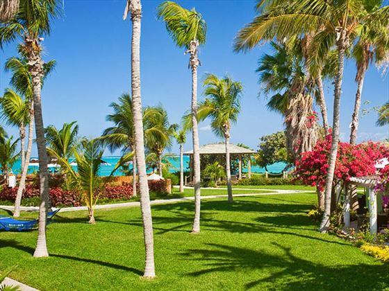 Tropical garden setting