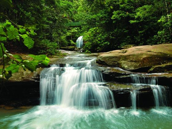 Buderim Falls, Sunshine Coast