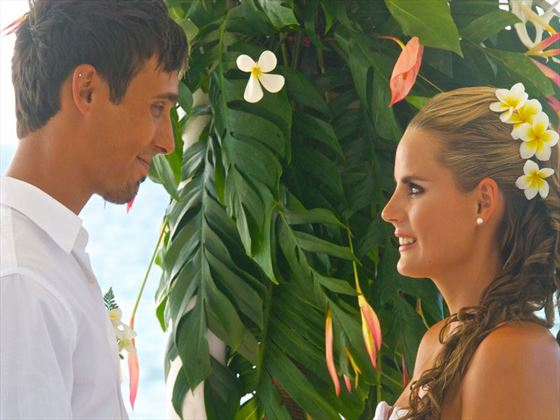 Love and romance on Castaway Island