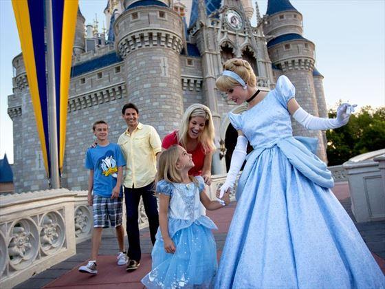 Cinderella and guests at Magic Kingdom park
