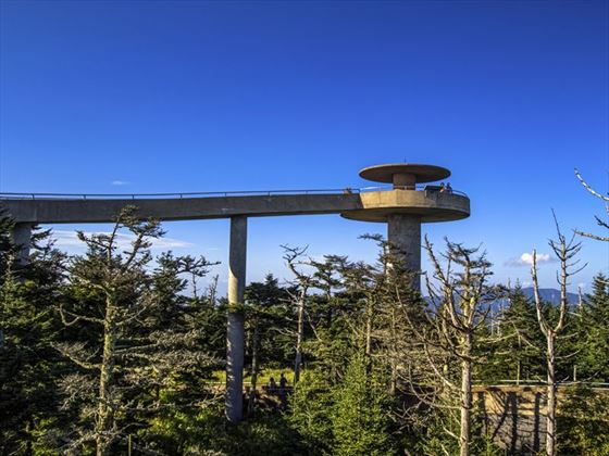 Clingman's Dome in the Great Smoky Mountains National Park