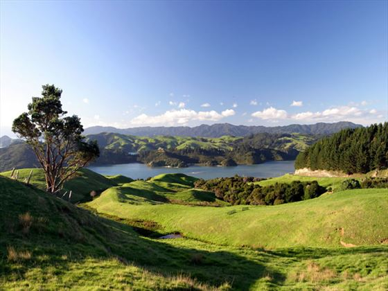View of the Coromandel Peninsula