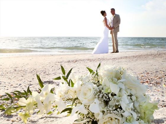 Stunning wedding at Clear Water, Florida