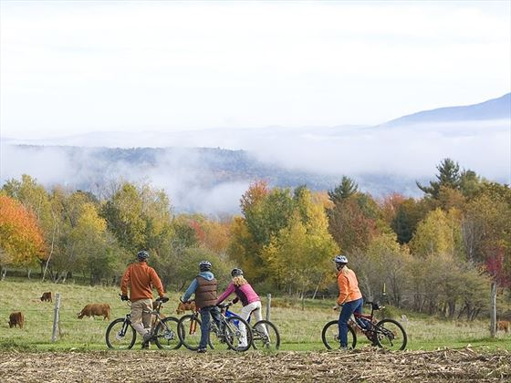 Cycling around the farms of Vermont