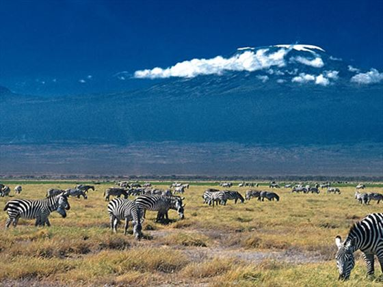 Day trip to Amboseli