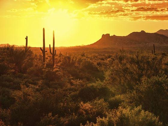 Arizona desert outside Scottsdale