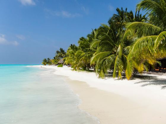 Meeru Island Resort Hotel Review Maldives: Meeru Island Resort & Spa, Maldives, Book Now With