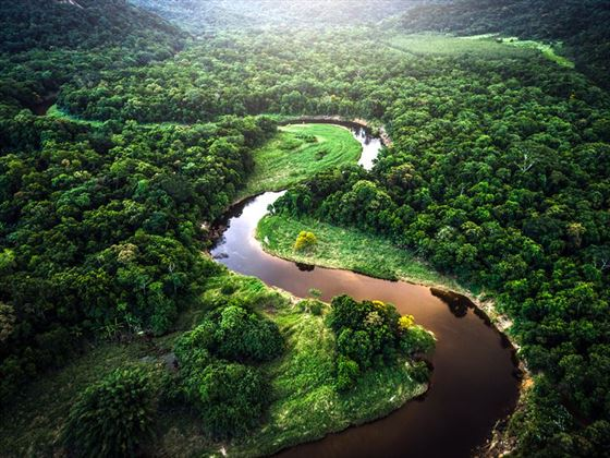 Drone view of the Amazon