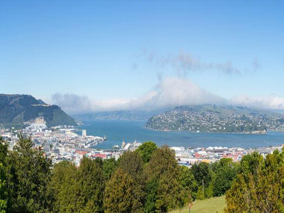 Dunedin, Otago Peninsula