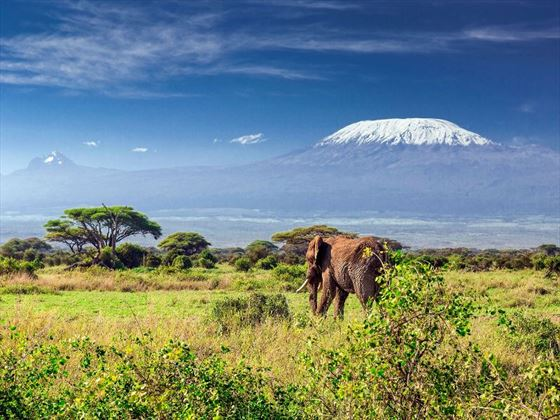 View of Mt Kilimanjaro from Amboseli National Park