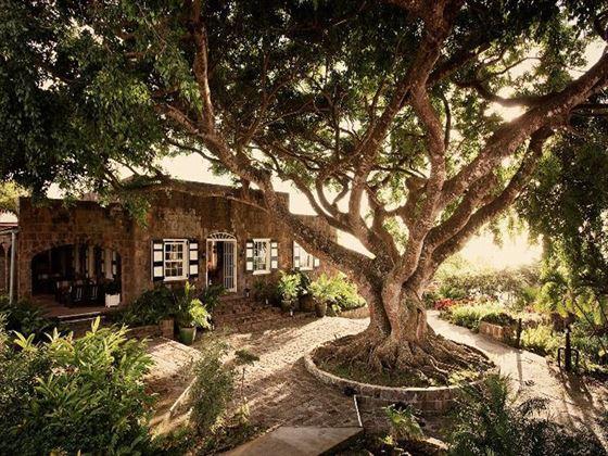 Montpelier Plantation Resort