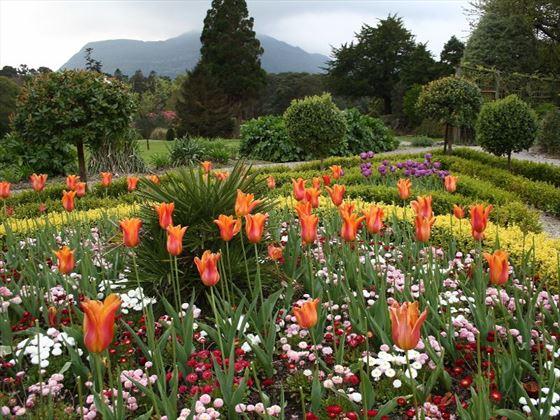 The gardens of Muckross House