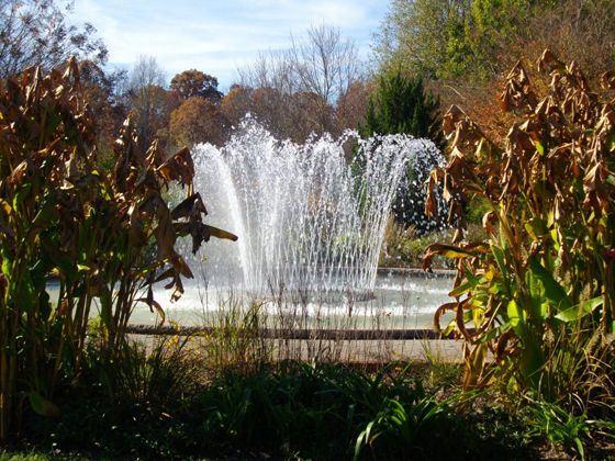 Fountain at Daniel Stowe Botanical Garden