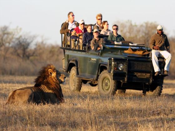 Game drives at Savanna Lodge