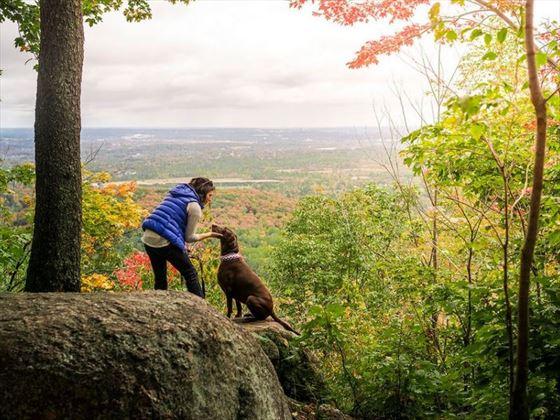 Gatineau Park (near Ottawa) in autumn