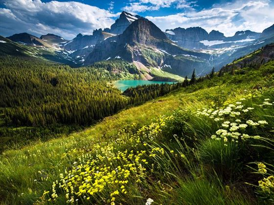 Grinnell Glacier Trail, Montana
