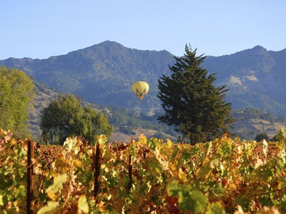 Hot air balloon flying over Napa Valley