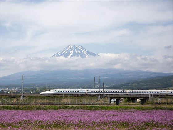 The bullet train in Japan
