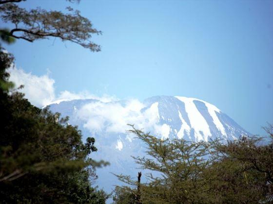 Kilimanjaro from Mount Meru Game Lodge