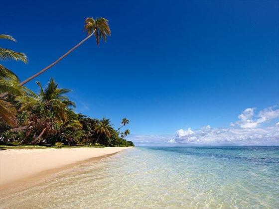 Lomani Island beach