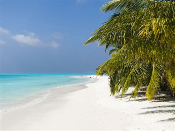 Stunning beach, Meeru Island Resort & Spa