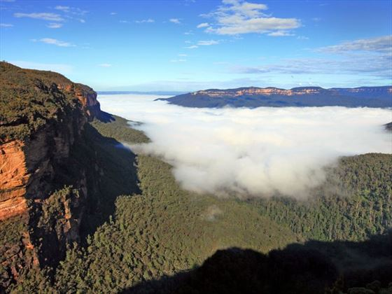 Mist falling over the Blue Mountains