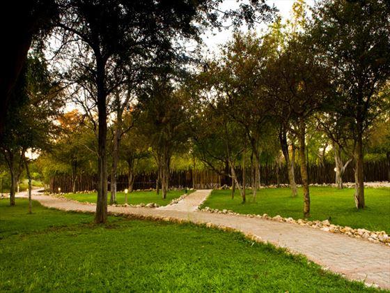 Mushara Lodge grounds