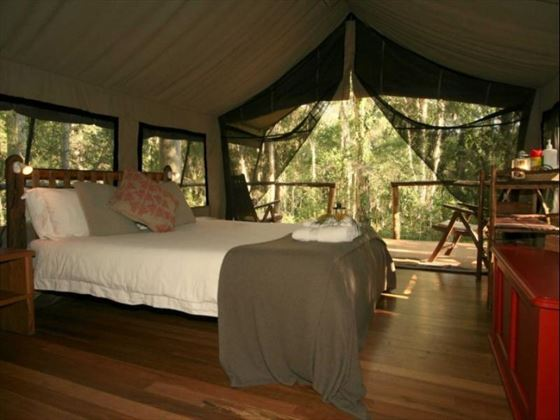 Bed in Safari Tent