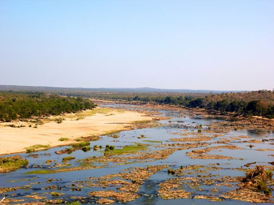River through the Kruger National Park