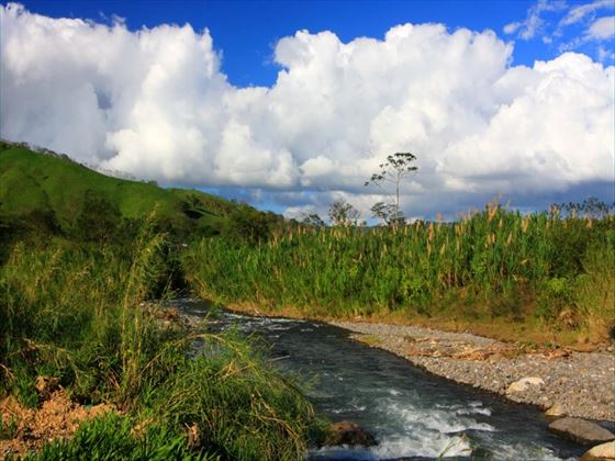 River in Monteverde