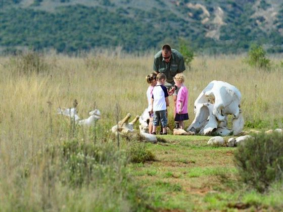 Riverdene kids activities at Shamwari Private Game Reserve