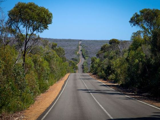Long road in Kangaroo Island