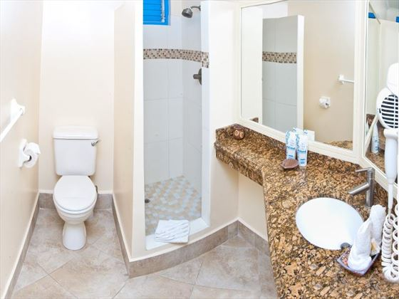 Rostrevor Hotel bathroom