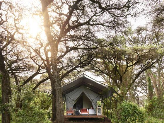 Tent exterior at Sanctuary Ngorongoro Crater Camp