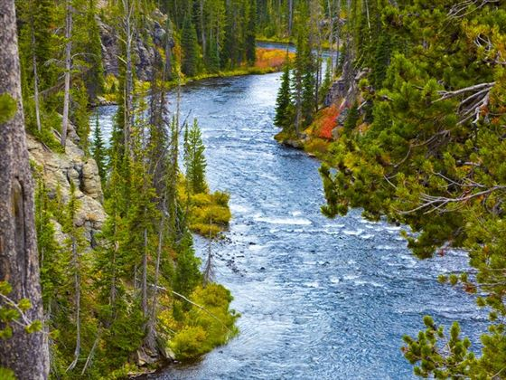 Snake River flowing through Yellowstone National Park